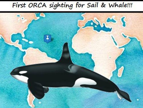 orcas redx