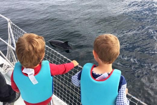 Delfine Biskaya