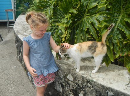 Of course Claire finds a cat up at the top of a mountain. Of course she does.