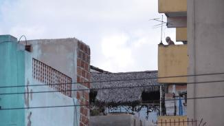 Der typische kubanische Balkon