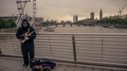 Die Straßenmusiker sind hier etwas haariger