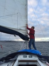 dealing with sail
