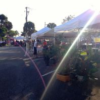 Vero Beach has a Farmer's Market on Saturday morning near the beach. It reminds me of Riverdale's, although the view is a tad better.