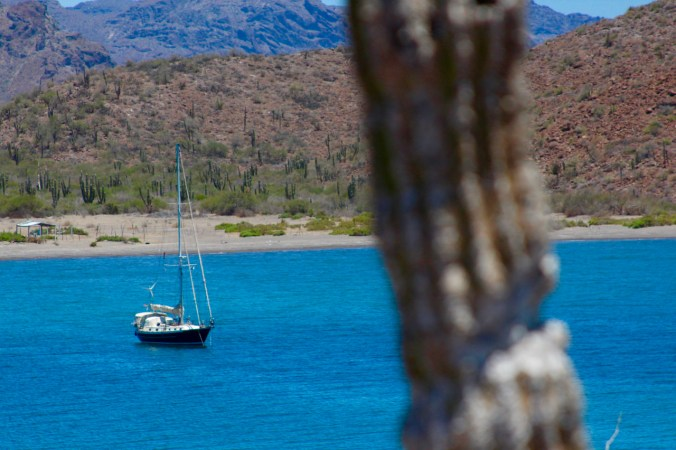 Juniper at anchor in San Evaristo