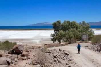 San Evaristo Salt Flat