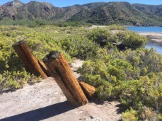Ruins of something at Puerto Ballandra