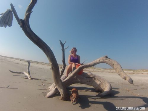 sailing luna sea cruising travel blog cumberland island beach