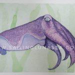sailing luna sea original watercolor cuttlefish painting art