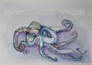 sailing luna sea original watercolor octopus art artist