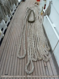 Mooring line flaked on deck