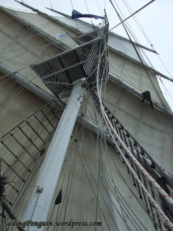 One aloft to sort out the ropes for Mislav's sail