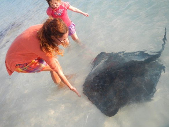 Feeding a stingray on Stocking Island.