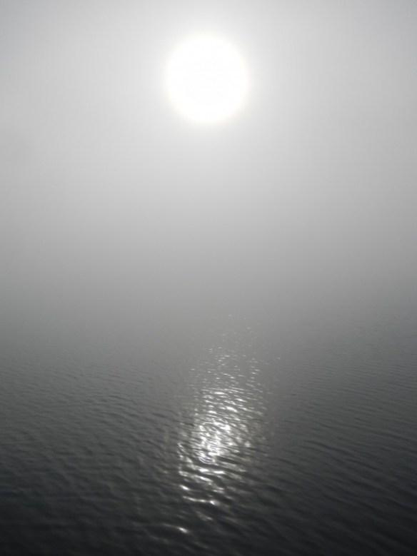 First foggy sunrise since Washington.