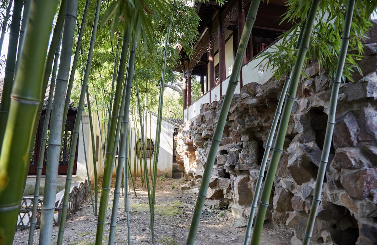 Canglang Garden Bamboo