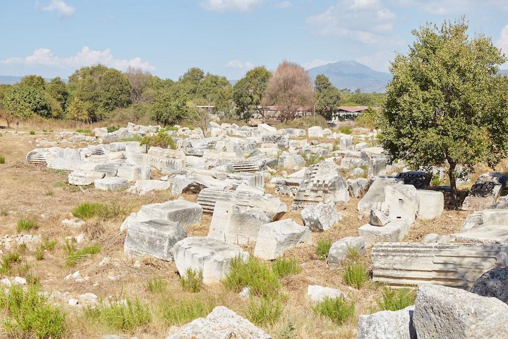 Serapeum Ephesus Guide