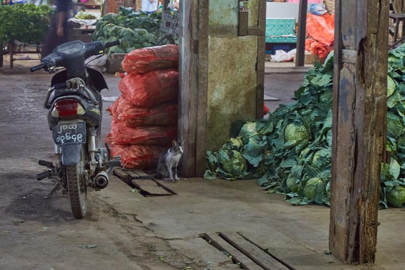 Mandalay Night Market