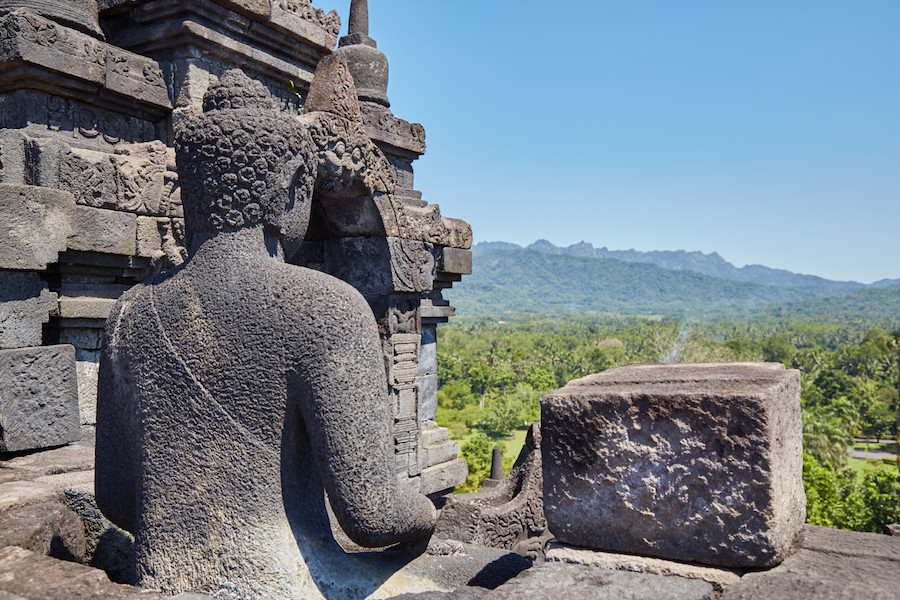 Borobudur Buddha View