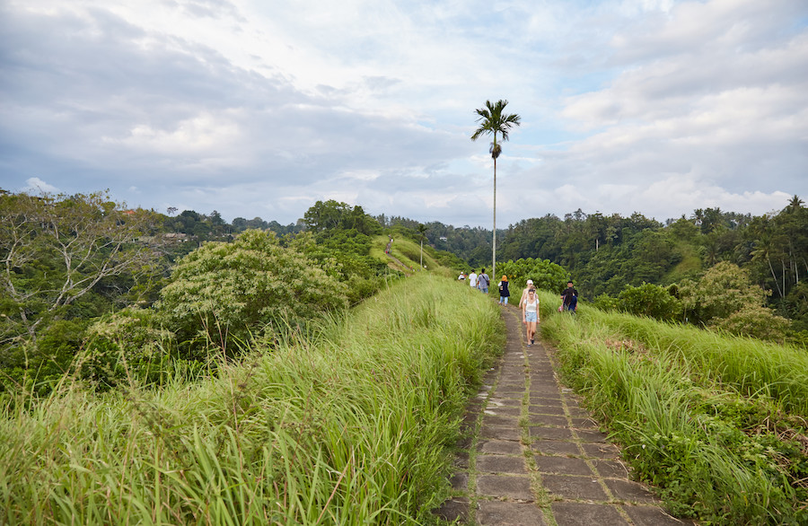 Things to do in Ubud - Campuhan Ridge