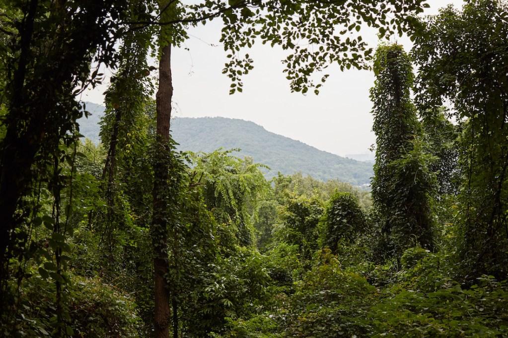 Hangzhou Mountain