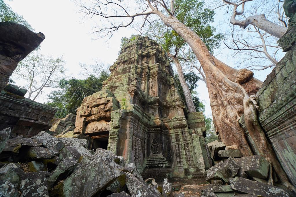 Ta Prohm Triad
