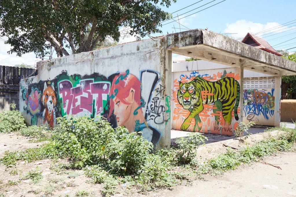 Ping River Street Art