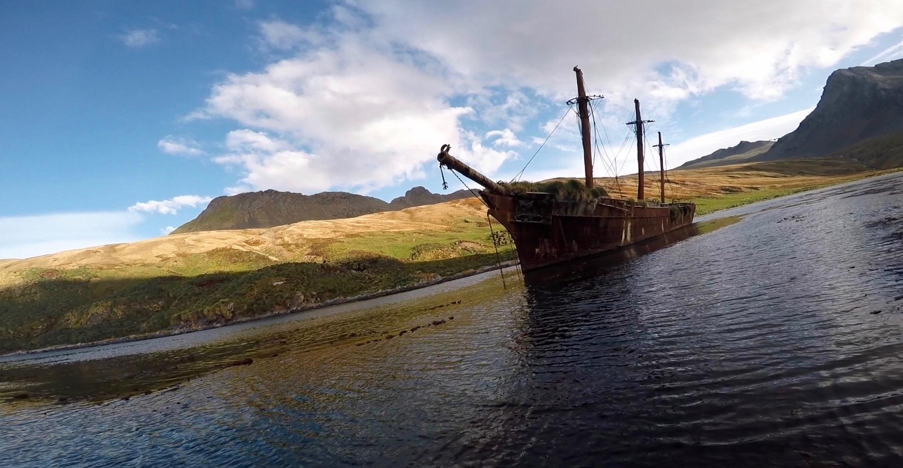 Bayard at Ocean Harbour