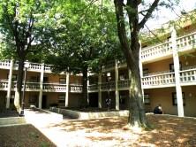 Reimert, la résidence étudiante qui organise les plus grosses fêtes du campus