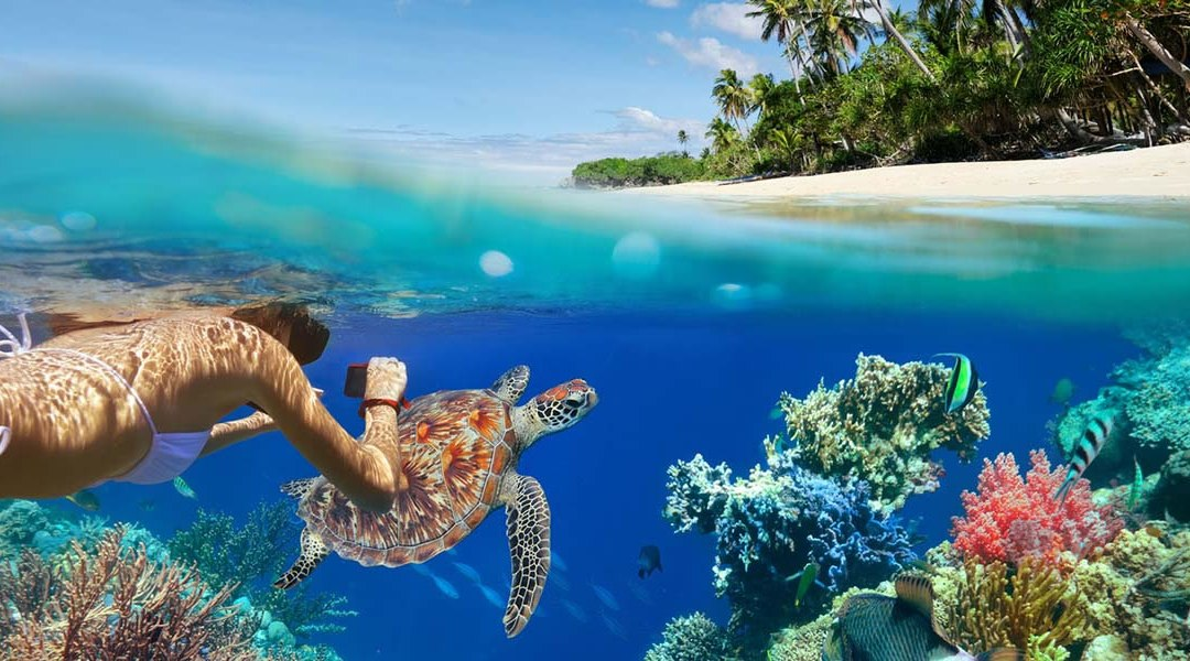 Drop The Oxybenzone or Stop Swimming In Maui's Waters