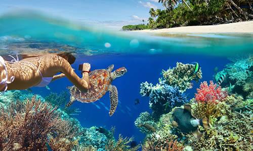 top-ten-snorkeling-spots-in-maui