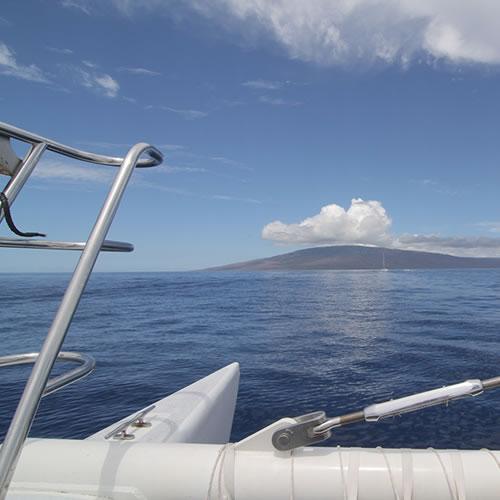 whale-watching-tour-maui-sail-maui500