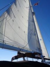 Sails are set