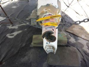 Cutlass Bearing