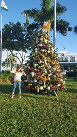 Christmas in Miami