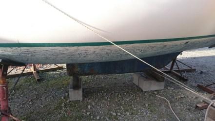 L'arrière du saumon : c'est gratté