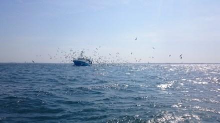 Un pêcheur apprcié