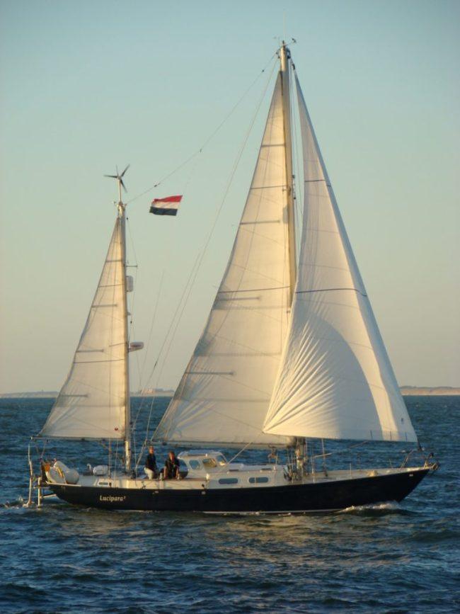 Luci sailing