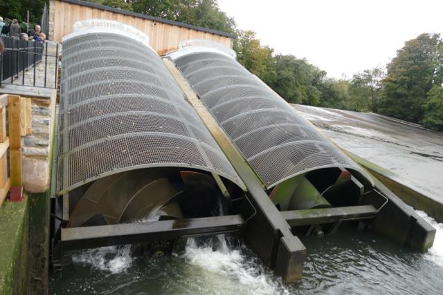 "Totnes ""Archimedes screw"" hydropower"