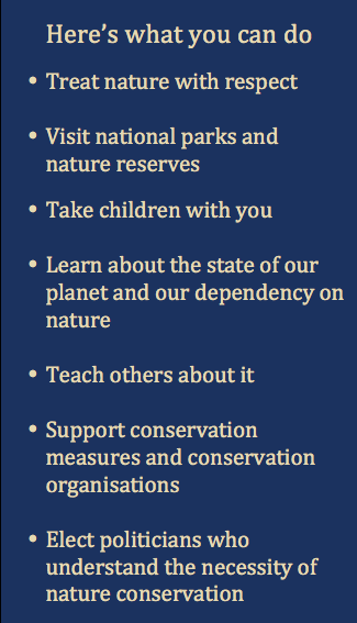What You Can Do to Protect Nature