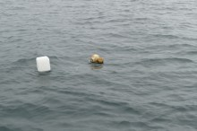 Watch out for fishing gear in the Rias