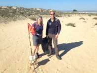 Beach-cleanup in Culatra