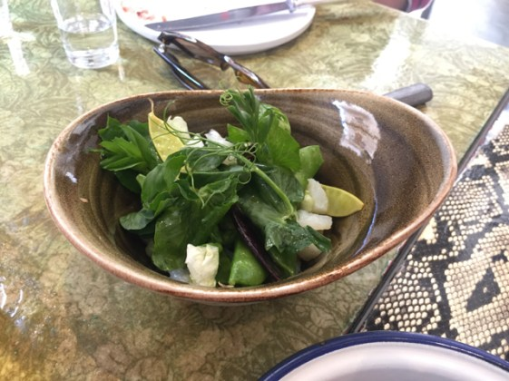 Delicious local organic salad