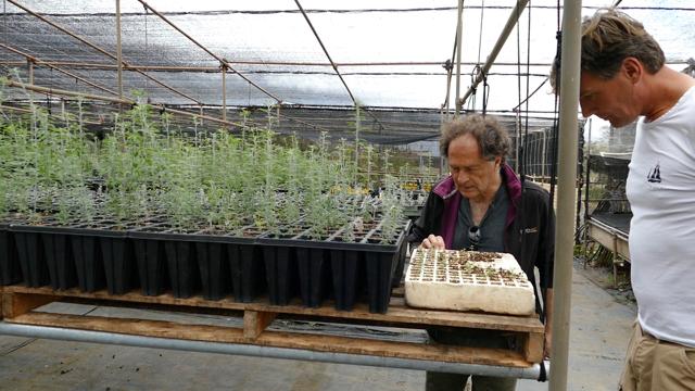 Organic farming at the Finca Experimental