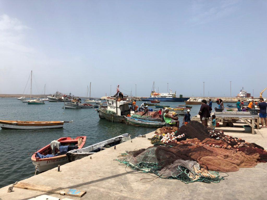 Palmeira fishermen