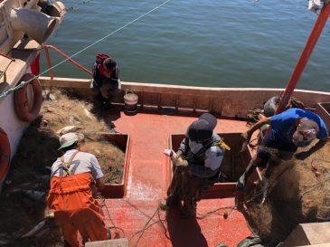 Docking the fish in Piriapolis