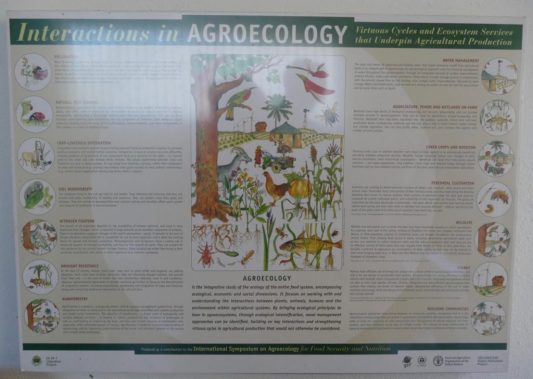 Agro-ecology in a nutshell
