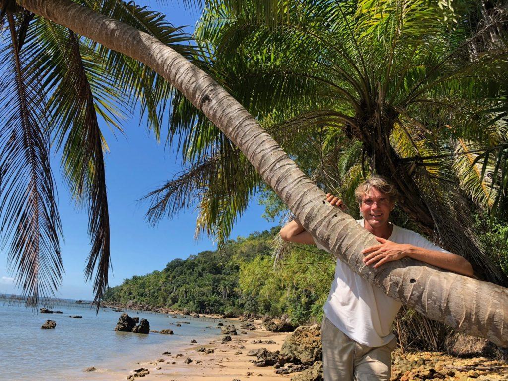 Coconut trees on sandy beaches