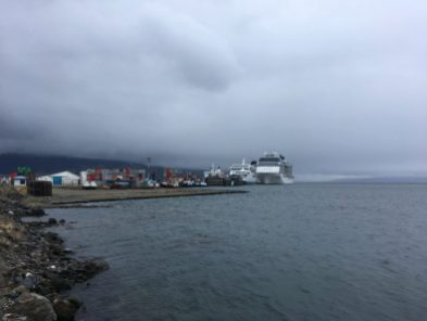 Lots of cruise ships coming and going