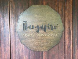 Arty Nangapiré