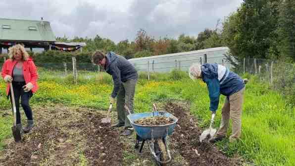 Joke and Meint helping with organic potato farming