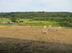 Finnriver Cidery farm - herbs, hoophouses, veggies, blueberries, chickens and pigs